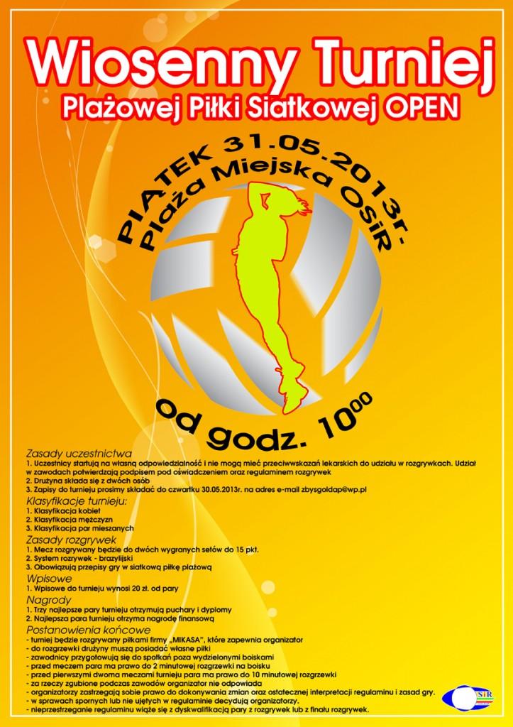 plakat siatkowka plazowa 2013