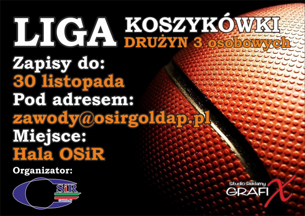 liga koszykówki (1)